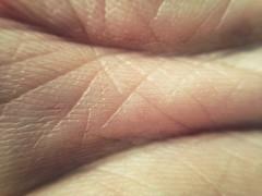 FullSizeRender (36) (sswartz) Tags: abstract macro closeup flesh skin wrinkles