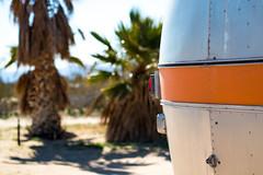 Kate's Lazy Desert (dwissman.photography) Tags: desert joshuatree trailer airstream camper