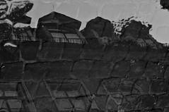 4153 Weimar (lars.kilian) Tags: weimar schwarzweiss spiegelbild regen pftze pflasterstrase