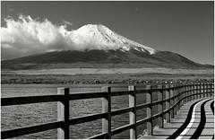 78 (Joe Nathan78) Tags: lake japan fuji lac mountfuji japon yamanakako yamanakakolake