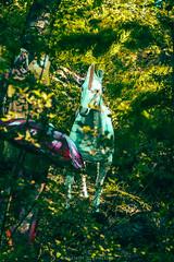 Bosque Encantado, Chilln. (Seba Silva) Tags: chile forest photoshop 50mm bosque unicorn charmed lightroom a57 preset unicornio bobo minoltalens sonyalpha macro28 slta57 sebastiansilvaogalde