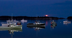 Red moon rising (Don Seymour) Tags: moon harbor maine fullmoon moonrise bluehour stonington lobsterboats