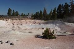 Fountain Paint Pot Trail (Tjflex2) Tags: pools springs yellowstonenationalpark yellowstone geysers fumarole fountainpaintpot