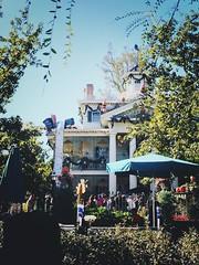 #disneyland #disney #californiaadventure #hauntedmansion #nightmarebeforechristmas (thedisneylandlife1) Tags: disneyland disney hauntedmansion nightmarebeforechristmas californiaadventure