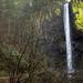 Cachoeira Latourell...