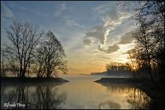 Sunrise (alfvet) Tags: sunrise river nikon alba fiume acqua inverno platinumheartaward veterinarifotografi