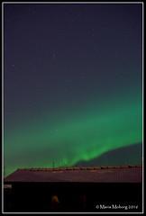 Northern lights jan 31 2016 (mmoborg) Tags: sky night stars himmel natt northernlights norrsken stjärnor mmoborg