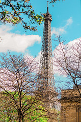 La Tour Eiffel (Paula.HK) Tags: travel paris france film architecture photoshop vintage 50mm nikon europe eiffeltower eiffel toureiffel     tavel lightroom         vsco