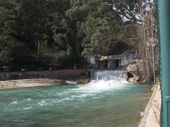 2016.02.21_OlhosAgua_Alcanena_1920x_077 (PatricioDomingues) Tags: portugal water gua olhosdeagua alviela 20160221