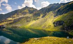 Balea Lake (Sorin Mutu) Tags: lake mountains reflection grass alpine romania balea transfagarasan