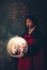 Lunar New Year, Book 1 (Oriental Folklores #10) (Dizzodin) Tags: new flowers portrait art cherry asian dorothy lights smoke traditional year blossoms fine chinese peach culture korean vase lantern conceptual lunar letrendary