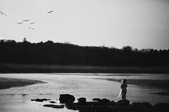 Fly! (privizzinis passion photography) Tags: ocean sky people blackandwhite bird texture nature water girl monochrome childhood birds children outside outdoors fly movement rocks child dress wind outdoor adventure explore serenity serene