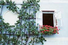 (Tsunghsuan Tsai) Tags: color film window austria europe minolta  hallstatt minoltahimatice