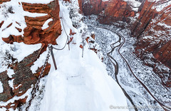 Zion Nationa Park.jpg (gaillard.galopere) Tags: voyage travel winter usa mountain snow nature montagne wonderful utah us nationalpark high amazing sandstone awesome hiver roadtrip explore backpacking zion neige angelslanding extérieur calme discover 2016 etatsunis exterieur etatsunisdamérique visitutah exploringtheglobe wowutah gaillardgalopere