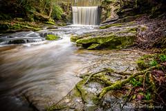 Nant Mill Wood. Feb 2016-24-8.jpg (revpdwilson) Tags: water wales landscape waterfall naturallight slowshutterspeed northwales nikon28300mmvr nikond750 lightroom6 nantmillwood