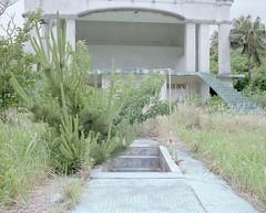 abandoned hotel (Egg Cheung) Tags: tree abandoned 120 film grass japan shower hotel decay stage dry medium 6x7 footbath urbex hachijojima haikyo fujicolorpro400h fujifilmgf670professional wwwfacebookcomurbanfragment