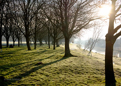 Early morning riverside walk - Lewes (Scotty H..) Tags: park uk morning trees winter england sun english birds landscape outdoors scenery shadows riverside bare scenic sunny british backlit picturesque eastsussex lewes deciduoustrees riverouse southmalling