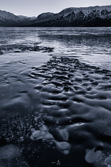 Bubbles and ripples (gmacfly) Tags: winter bw lake snow canada mountains ice water monochrome rockies frozen focus bubbles ripples stacking blend methane