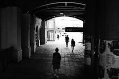 canonet ql17 g-III, home dev&scan (FotoPan F.F.) Tags: street blackandwhite monochrome analog 35mm canon blackwhite streetphotography poland polska ishootfilm epson streetphoto analogue canonet ilford bnw poznań filmisnotdead filmforever filmfeed
