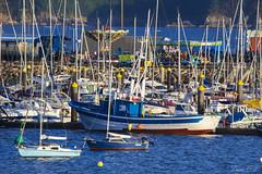 Embarcadero (cazador2013) Tags: costa muelle mar barcos feria embarcadero rocas atracciones veleros pantalan