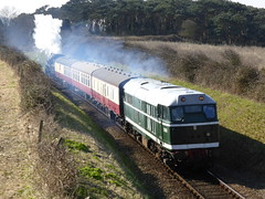 D5631 and 76084, 16th March 2016. (chrisdoward) Tags: preserved railways 2016 nnr 76084 d5631 bridge304 mgnrs weybournetractiongroup 76084locomtivegroup