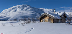 Cabin in winter wonder land... (bent inge) Tags: winter white snow ski norway stars cabin nightshot telemark hytte haukeli norvge vgsli lafte norwegianmountains nikond810 norwegianwinter bentingeask