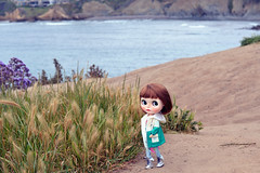 "A walk with this girl at a incredibly beautiful place called ""La Jolla Cove""."