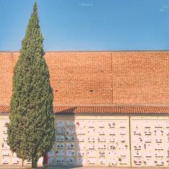 La visita (Kumo Moku) Tags: apple cemetery phone outdoor bologna melancholy malinconia emiliaromagna thevisit lavisita certosadibologna cimiterodellacertosa hipstamatic