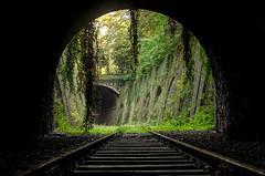 Petite ceinture 4 (charles.enchine) Tags: street urban streetart paris tag railway tunnel urbanexploration urbanjungle exploration urbex abbandonned
