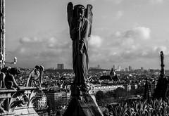 Horn Chorus (chrisroach) Tags: city blackandwhite bw paris monochrome angel blackwhite cityscape landmarks notredame gargoyle horn parisfrance cityoflight