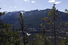 Banff, Tunnel Mountain Hike, April 9 2016 (16)_e_apr_11_16 (Velates) Tags: canada mountains alberta rockymountains banffnationalpark