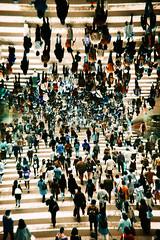 -uncrossable walk (Hodaka Yamamoto) Tags: city film lomo lca lomography crossing doubleexposure turquoise double lomolca multipleexposure negative osaka filmcamera crosswalk doubles multiexposure filmphotography