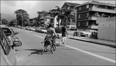 dogs  #862 (lynnb's snaps) Tags: 2016 apx100 agfa leicaiiic rodinal bw film people street dogs blackandwhite blackwhite bianconero noiretblanc monochrome schwarzweis biancoenero 黒と白 bianconegro leica analogue analog lynnburdekinphotography 35mmfilm ©copyrightlynnburdekinallrightsreserved rangefinder barnack shadows shadow ishootfilm