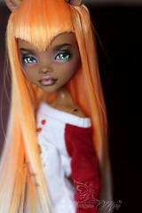 DPP_doll0045 (Emerald_Fairy) Tags: monster high doll ooak repaint dollphotography
