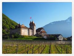 Chteau d`Aigle (Suisse) (Fabio Pinna) Tags: castle primavera monument landscape switzerland spring europe suisse svizzera vignes castello chteau paesaggio vaud chteaudaigle iphoneography instagram instagramapp uploaded:by=instagram