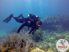 Scuba Dive in Key Largo-April 2016-39 (Squalo Divers) Tags: usa divers key florida scuba diving padi ssi largo squalo