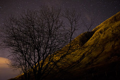 (Anton Andreev) Tags: sky mountain tree silhouette night stars landscape fort hill william clear astrophotography starry