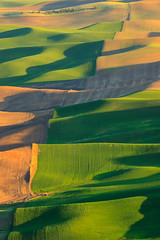 Palouse Farmland (Matthew Singer) Tags: washington unitedstates garfield palouse steptoebutte