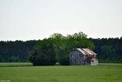 My Country Home (Explore - May 1, 2016) (Studio 9265) Tags: old city trees summer usa house tree abandoned home broken field rural america nc nikon rust elizabeth united north may carolina weathered states 2013 d5000