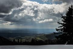 point de vue dans le 70 (cedric.simonot) Tags: nature paysage printemps nikond3200 1685mm