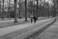 Strolling down memory lane (- ckS -) Tags: park bw dresden couple holdinghands garten groser