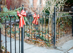 Happy Fence Friday (marysmyth(NOLA13) ) Tags: christmas red film pine fence mediumformat gold lights gate holidays decorative stripes garland bows cabbagetown contax645 kodakportra400