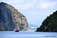 D72_7545 (Tom Ballard Photography) Tags: vietnam halongbay tourboats bayclub 20151118
