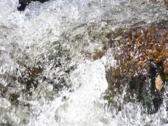 Splashing Water In Sabino Canyon-3 (Chic Bee) Tags: arizona agua rocks tucson stones bubbles boulders foam naturewalk corriente cascada catalinamountains froth rushingwater crystalline sabinocanyon splashingwater southwesternusa singingwater pequeñacorrientedeagua