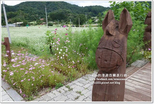 평창효석문화축제34