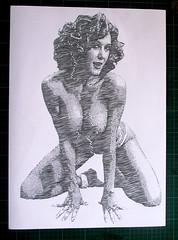 Brandi Love (Tenazadrine Boy) Tags: love de stencil porno papel brandi pornstar estrella plantilla estencil recortes papercutting brandilove