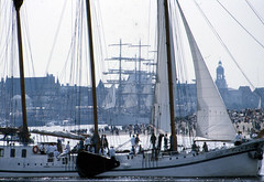 Eurosail 1993 (larry_antwerp) Tags: port sailing ship belgium belgi vessel 1993 antwerp schelde  antwerpen  schip                                   eurosail93 thecuttysarktallshipsrace
