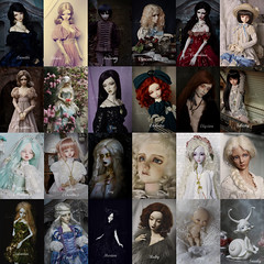 Our doll collection (AyuAna) Tags: ball design doll bjd dollfie jointed ayuana