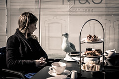 tea-time (erzsebet kiraly) Tags: travel ireland roof urban dublin bird rooftop nature canon restaurant cafe moments time tea terrace seagull stare guest staring teatime decision rooftopterrace travelphotograph 40d sharingmoments canon40d