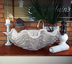 Grey Giant Clam Shell SINK 19 (LittleGems AR) Tags: ocean sea sculpture sun beach home statue giant bathroom shower aquarium soap sand bath sink natural contemporary unique decorative shell craft style toilet towel clam basin special shampoo taps wash ornament gift seashell pearl nautical reef decor spa luxury opulent fossils oneoff clamshell mollusks cloakroom bespoke tridacna sculpt crafted gigas facetowel